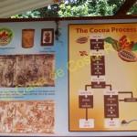 Diagram of Chocolate Tour