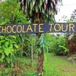 Welcome to the chocolate tour! I hope you're hungry!