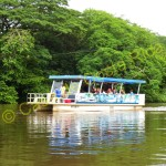 Cruise up the Rio Frio on a relaxing boat ride.