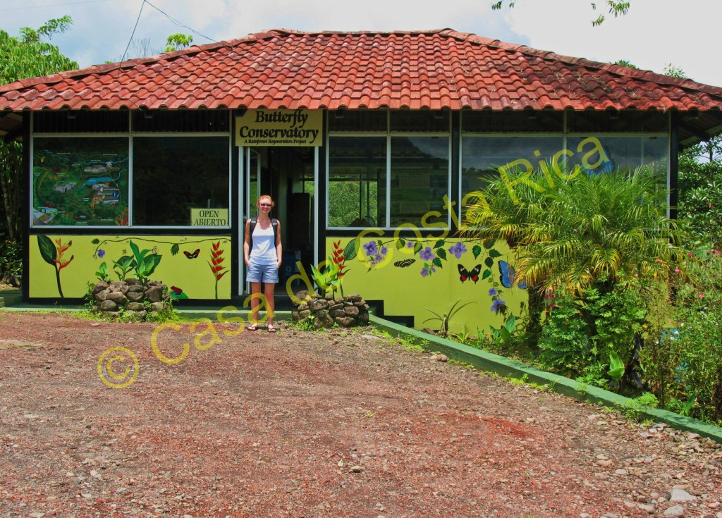 Reception area for the Butterfly Conservatory in El Castillo.