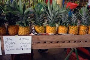 la-fortuna-farmers-market-8