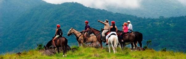 Horses in Costa Rica
